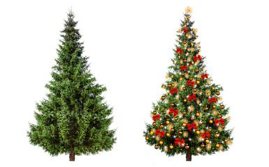 Weihnachtdbaum geschmückt und ungeschmückt