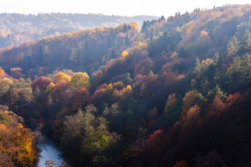 Colors of the forest and river that crosses it in a middle of autumn