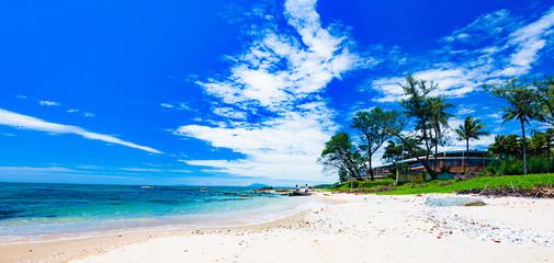 paradise tropical beach