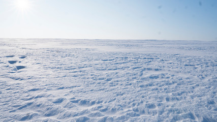 A Field covered with a snow in winter season. Winter countryside landscape.