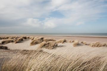 Dutch coast sand dunes beach with horizon, view from the dunes, blue sky, sea landscape