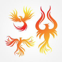 Phoenix Logo Design Vector Illustration