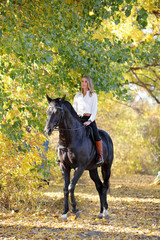Horseback - woman riding a horse. Horse and equestrian girl in autumn forest