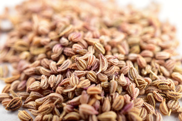 close up image of Ajwain Also Know as Ajowan, Caraway or Trachyspermum Ammi .