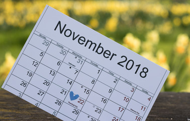 Close-up: calendar of November 2018 with marked date of Thanksgiving Day is on background flowering nature outside.