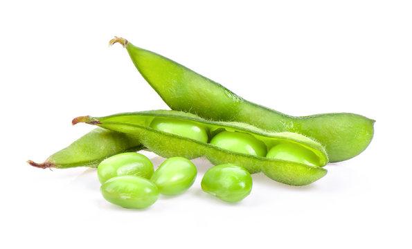 edamame green beans isolated on white background
