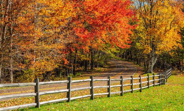 Grayson Highlands Virginia State Park in Autumn
