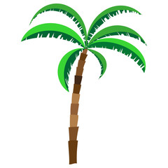 Palm trees in cartoon style isolated on white background. Colored design element for presentations, postcards, flyers, leaflets and posters, vector illustration