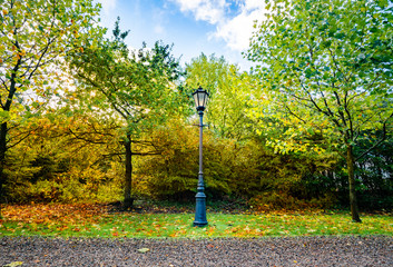 Autumn scenery with a retro street lamp in a park