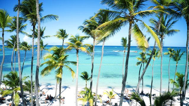 Luftbild vom Palmensandstrand in Punta Cana, Bavaro Beach, Dominikanische Republik