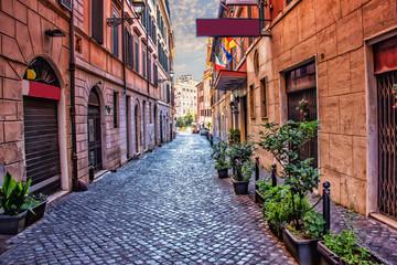 Old Italian Street Via di S. Martino Ai Monti in Rome downtown Wall mural