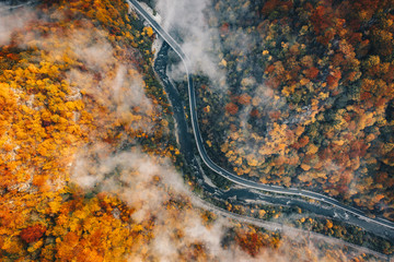 Fog on the road aerial view