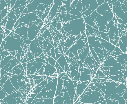 vector Seamless pattern of white winter branches