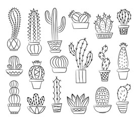 Set of cacti isolated on white background. Vector illustration.