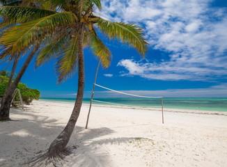 Zanzibar, landscape sea, palms beach