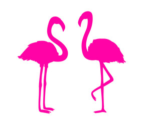Flamingos on white. Colored cartoon birds. Bright image. Illustration for polygraphy, banners, t-shirts and textiles