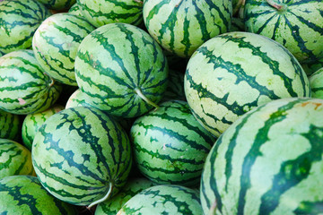 the freshly picked watermelon is still fresh and healthy
