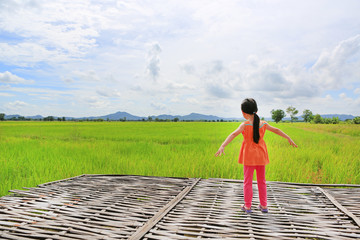 Rear view of little Asian child girl stretch arms and relaxed at the young green paddy fields with mountain and cloud sky.