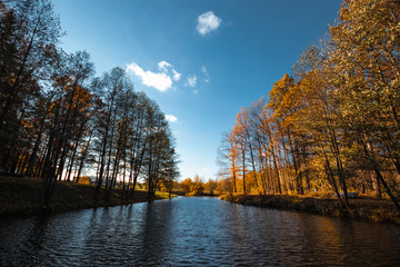 Creative background, nature, Autumn river forest. Golden autumn.