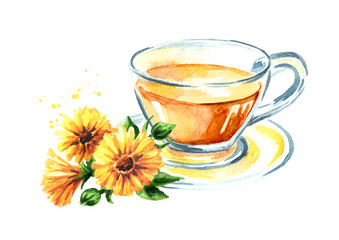 A cup of calendula (marigold) tea with flower. Watercolor hand drawn illustration,  isolated on white background
