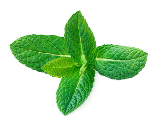 Fresh mint leaves isolated on white background. Raw Mint, spearmint close up