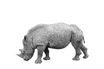 Rhinoceros. Isolated on white background. Vector illustration.