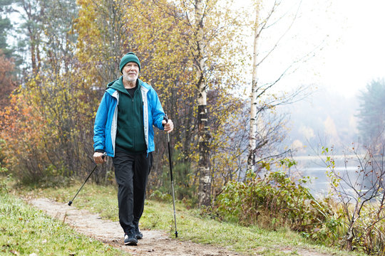 Picture of active fit Caucasian elderly man wearing sports clothes and warm hat having walk using nordic poles outdoors. Retired senior male nordic pole walker enjoying autumn morning outside