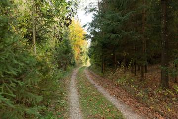 autumn in Upper Austria