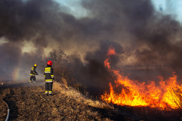 Firefighters battle a wildfire Fotomurales