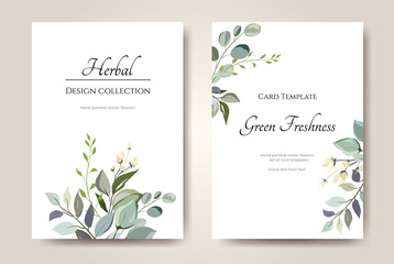 Set of card with herbs, leaves.  Floral poster, invite. Vector decorative greeting card or invitation design background