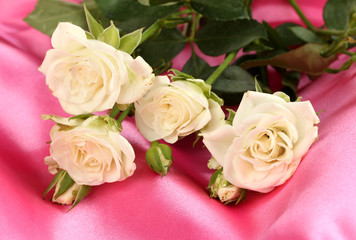 Beautiful white roses on pink satin close-up