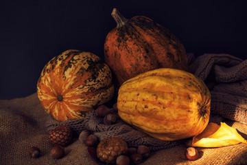 Autumn pumpkins in dark rustic cozy style