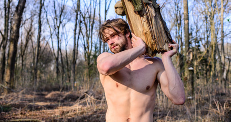 Man brutal strong attractive guy collecting wood in forest. Man brutal sexy lumberjack carry big log in forest. Lumberjack or woodman sexy naked muscular torso gathering wood. Masculinity concept