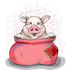 Picture with a piglet. To buy a pig in a poke. The sack opened, and the piggy sits there. Hand-drawn illustration. Cartoon. Watercolor style