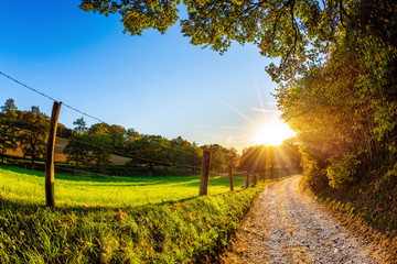 Wall Mural - Autumn landscape at sunset with a path beside a meadow