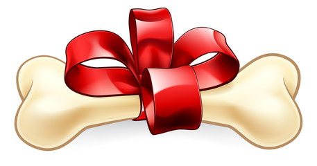 A pet dogs bone Christmas or birthday gift wrapped in a red bow and ribbon