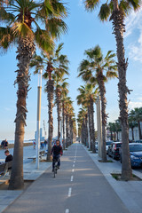 bicycle road in barcelona near the sea