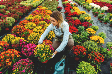 Young florist in flower field