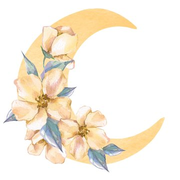 Watercolor moon with yellow flowers isolated on white
