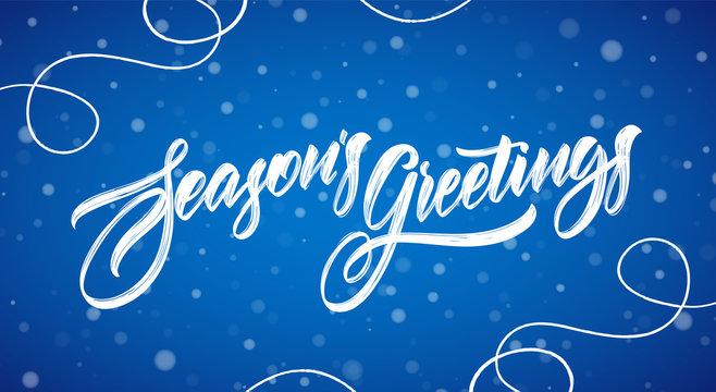 Vector illustration. Handwritten modern brush typy lettering of Season's Greetings on blue snowflakes background