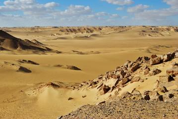 Wall Mural - Sahara desert. Egypt