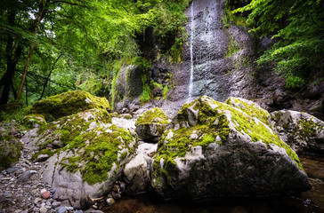 Arifat cascades