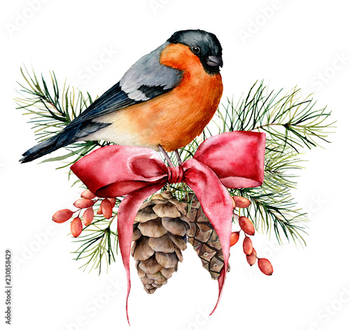 Christmas Card Clip Art.Watercolor Christmas Card With Bullfinch And Winter Design
