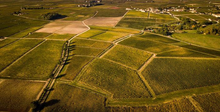Route des Chateaux, Vineyard in Medoc, amous wine estate of Bordeaux wine