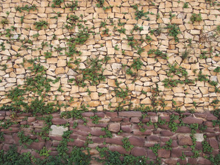 a large rough textured irregular brown stone wall with green foliage growing between the cracks