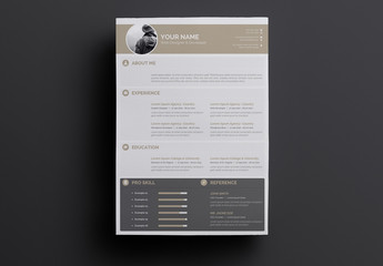 Gray and Tan Resume Layout