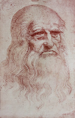 An illustration of Leonardo Da Vinci's portrait from a vintage book Leonard de Vinci, Eugene Muntz, 1899, Paris