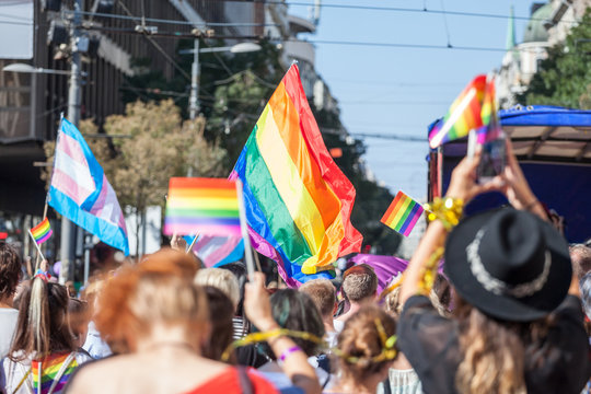 Crowd raising and holding rainbow gay flags during a Gay Pride. Trans flags can be seen as well in the background. The rainbow flag is one of the symbols of the LGBTQ community.