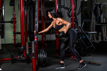 pretty fitness girl exercising with dumbbells in gym