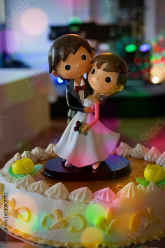 Cartoon wedding cake topper\
